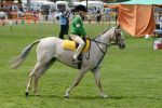Seymore Agricultural Show 2004 Views: 577 Rating: 0/5 Date: 02.01.05