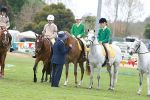 Seymore Agricultural Show 2004 Views: 525 Rating: 0/5 Date: 02.01.05