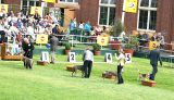 Royal Melbourne Show 2004 Views: 614 Rating: 0/5 Date: 28.10.04 620x360 (115.0 KB)